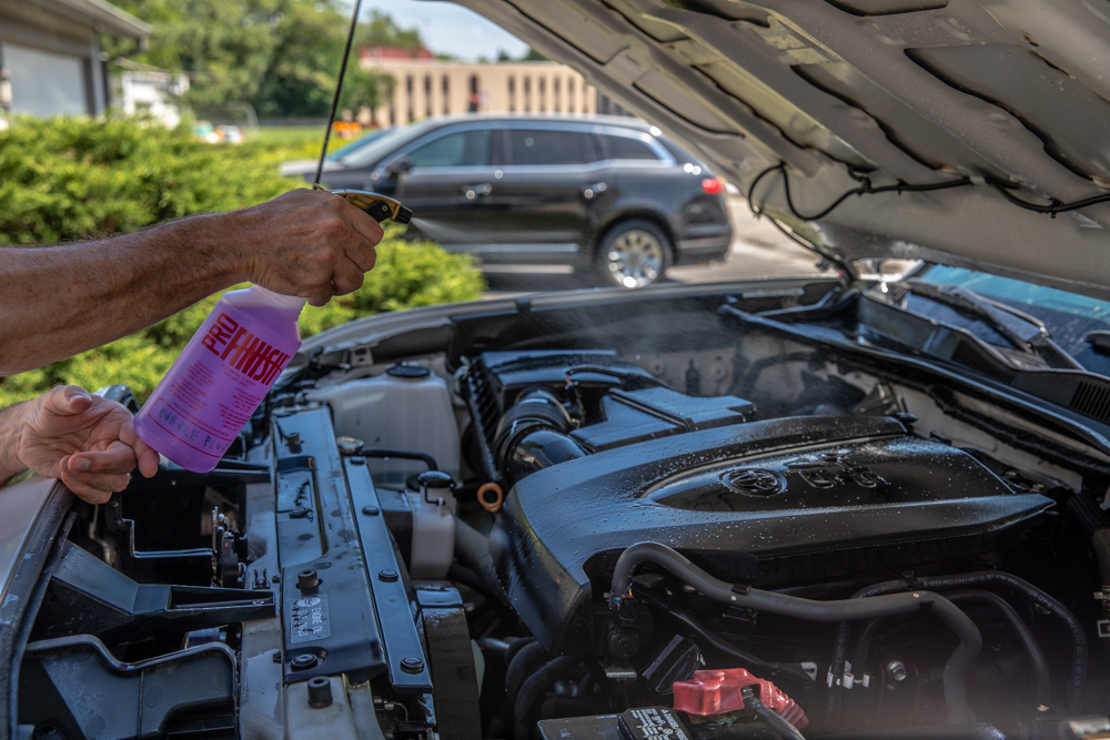 Cleaning & Degreasing Car Engine