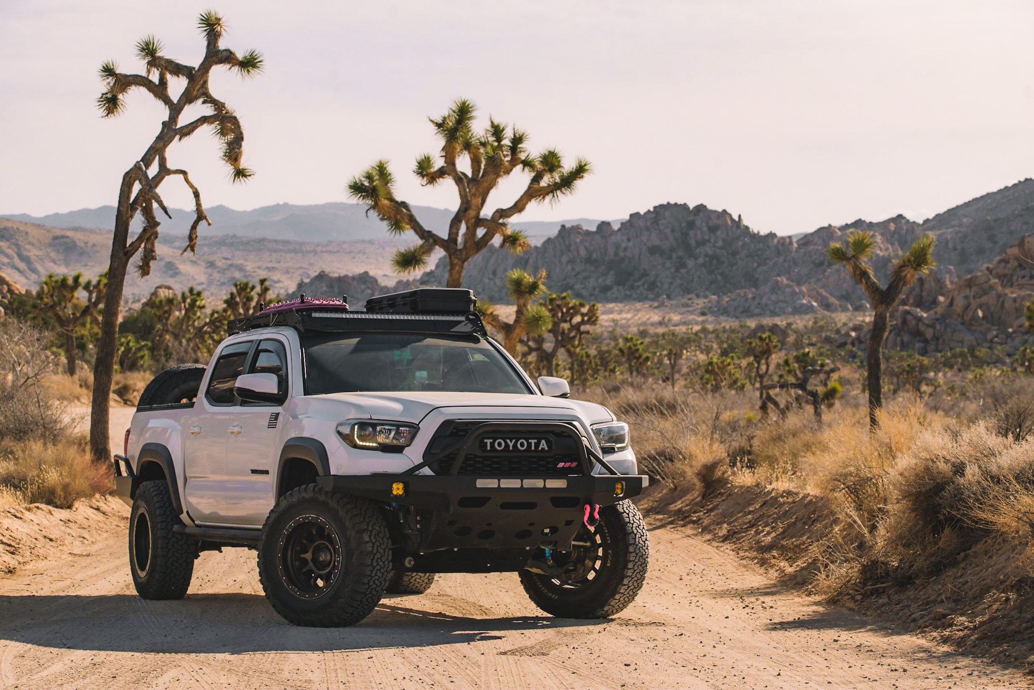 Lifted Super White 3rd Gen Tacoma with SCS Ray 10 Wheels, King Coilovers & Total Chaos UCAs