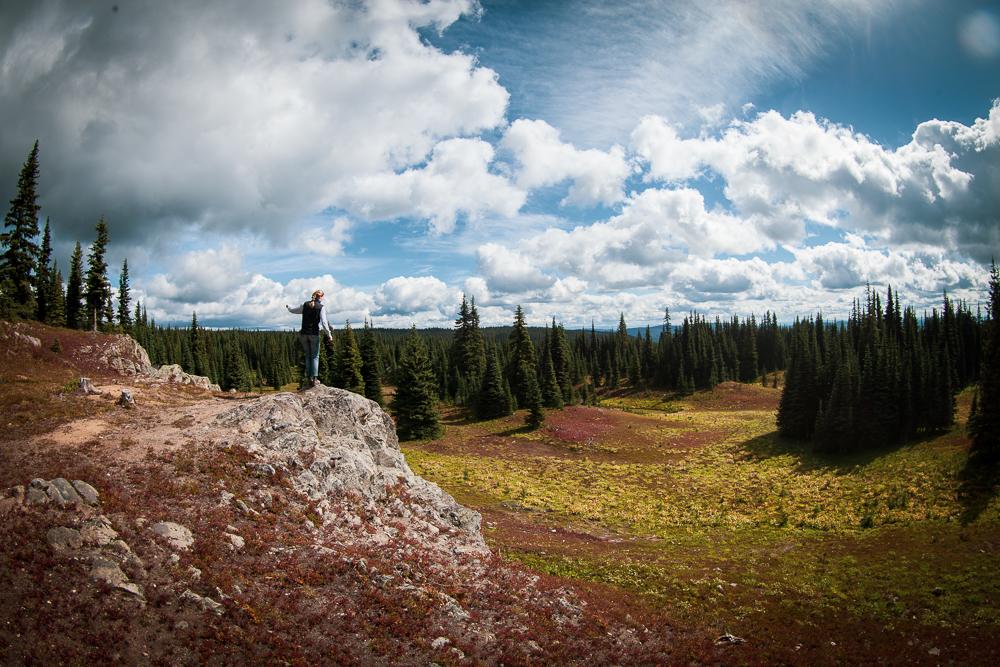 Whipsaw Creek Overland Trail Panoramic Mountain Views