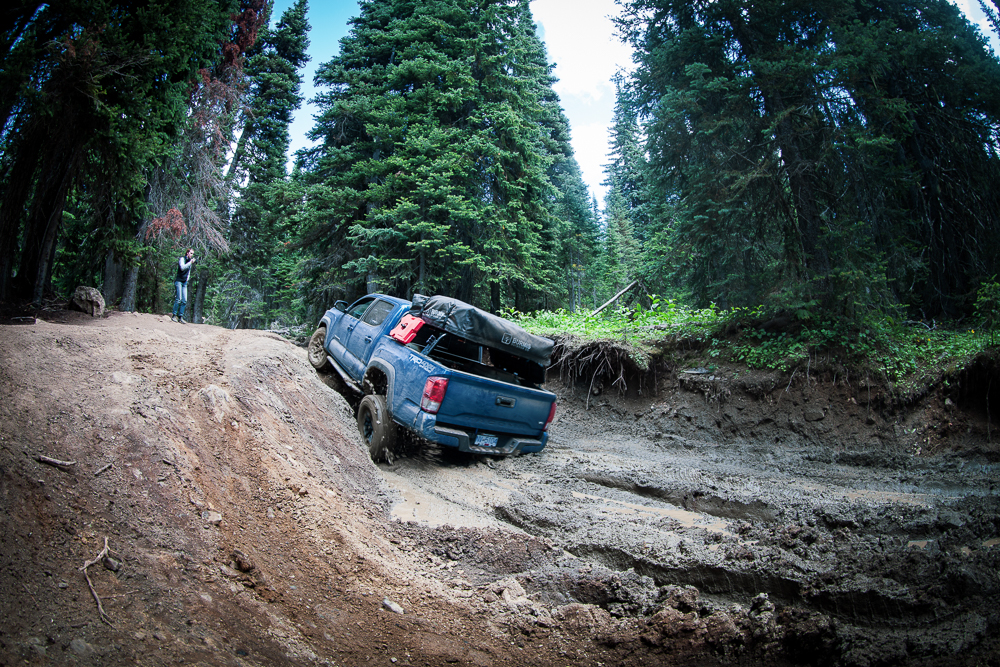 Calvary Blue Toyota Tacoma Off-Roading on Whipsaw Creek Trail in British Columbia